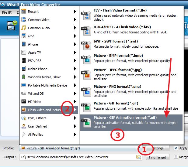 pravljenje gif fajlova iwisoft program
