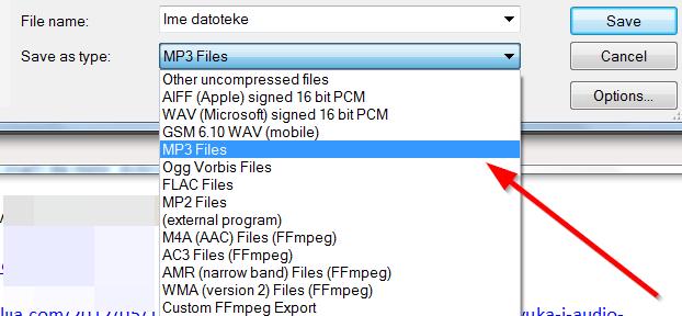 biramo format za snimanje datoteke