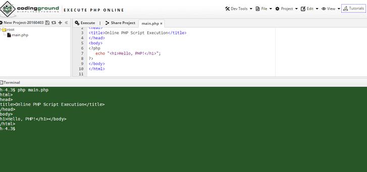 izvrsi programski kod onlajn